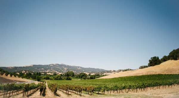 winery_estate3-600x330.jpg