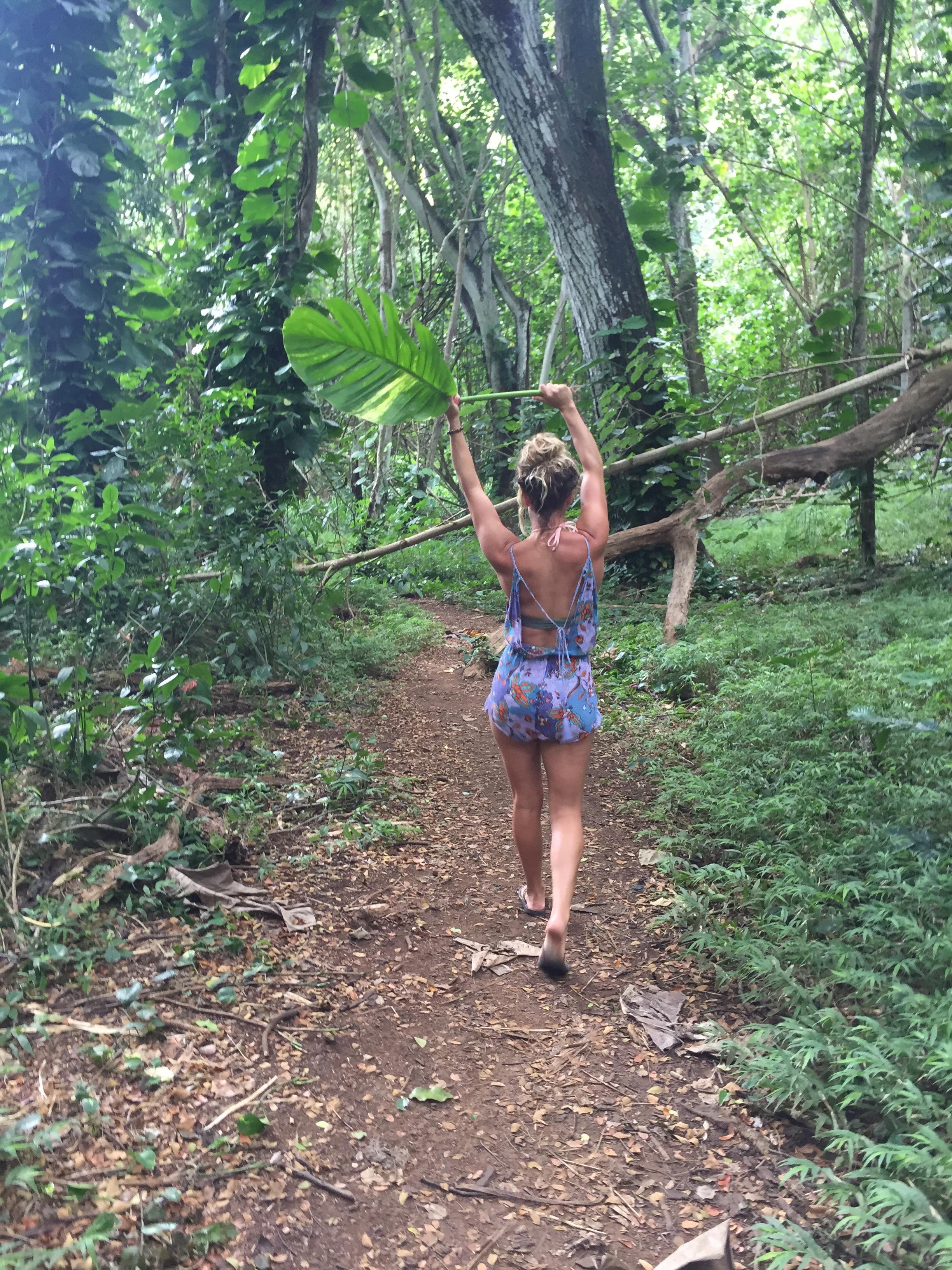 Kauai 4.jpg