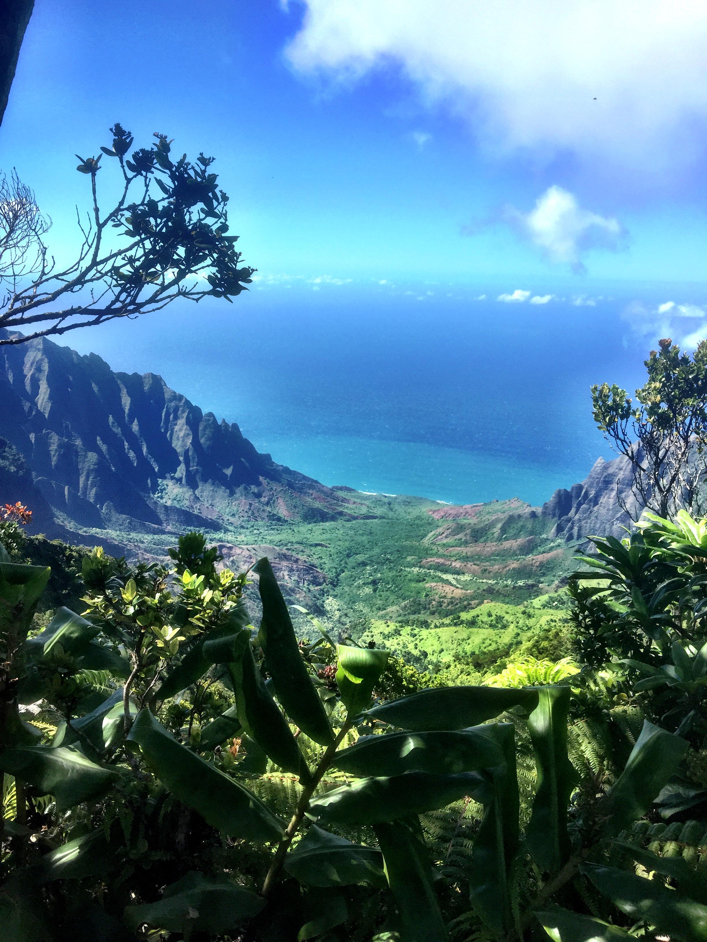 Kauai 12.jpg