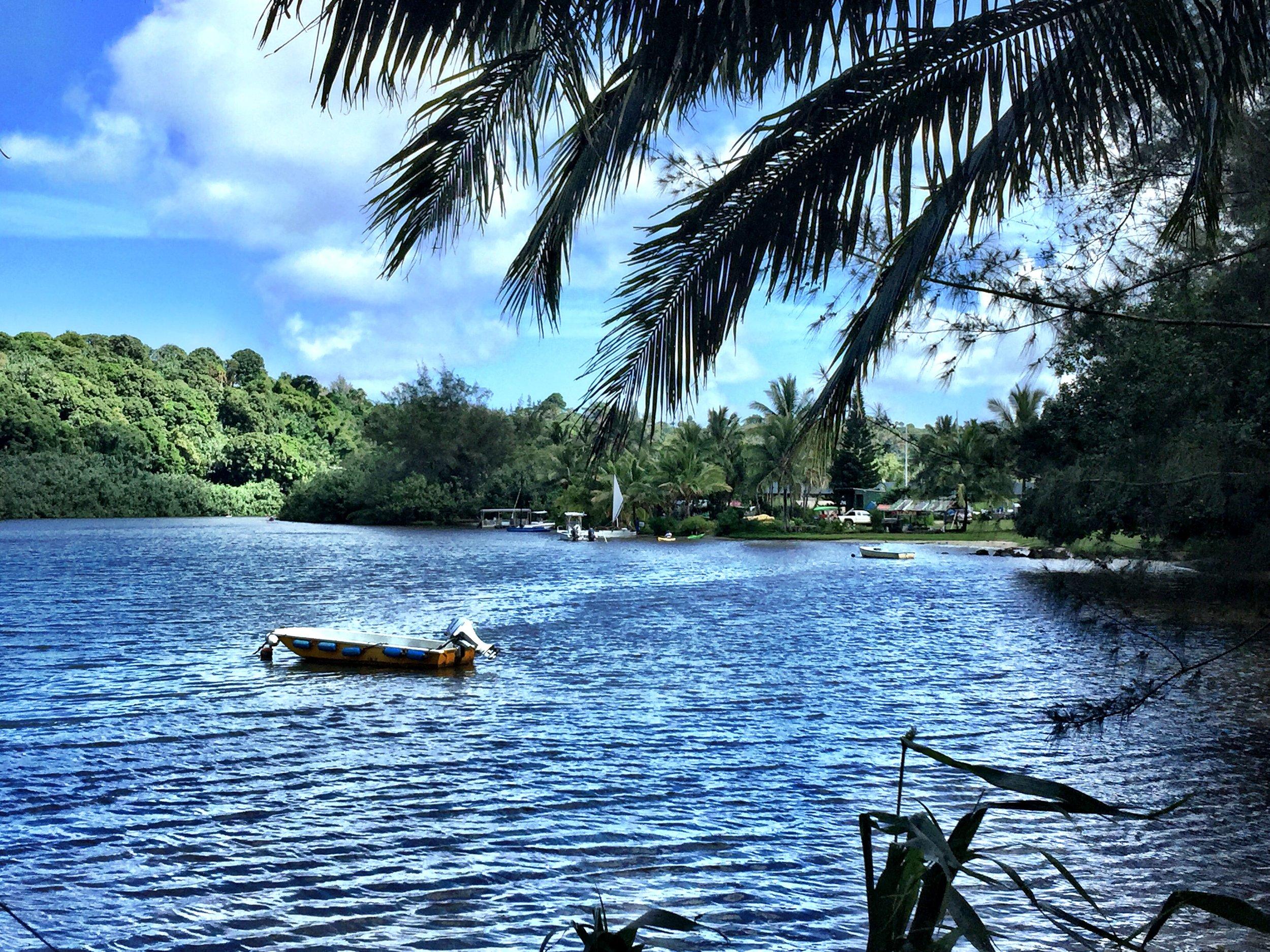 Kauai 21.jpg