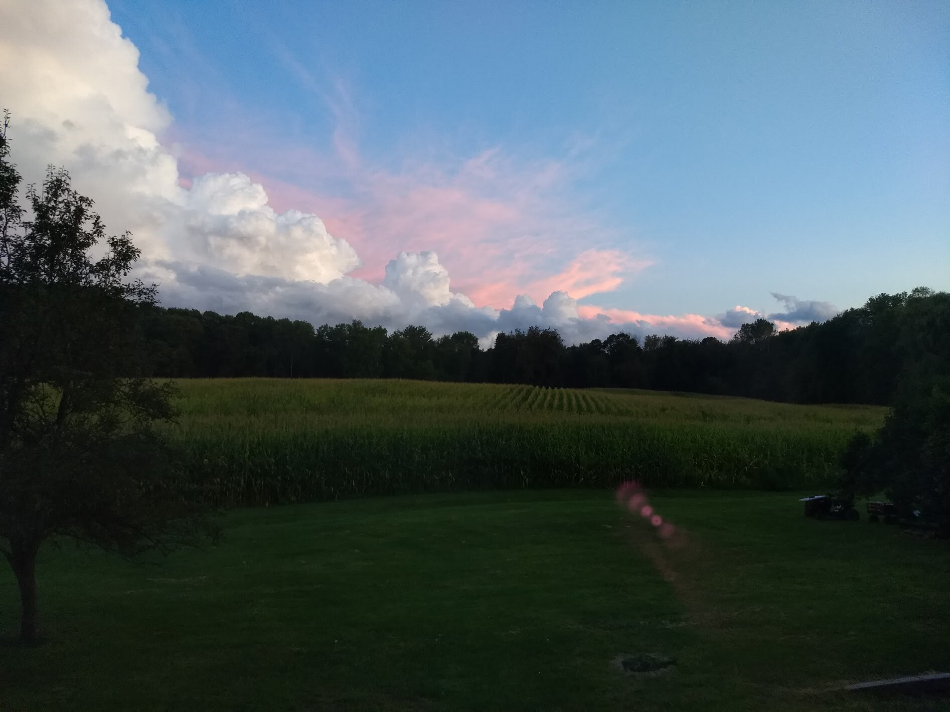 Light over the cornfield.jpg