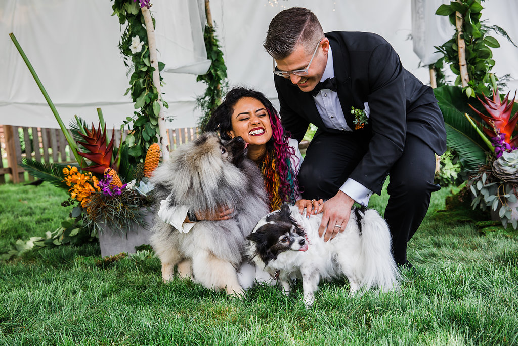 Bride and Groom with their Dogs of Honor Chicago Wedding Ella Farrell Weddings