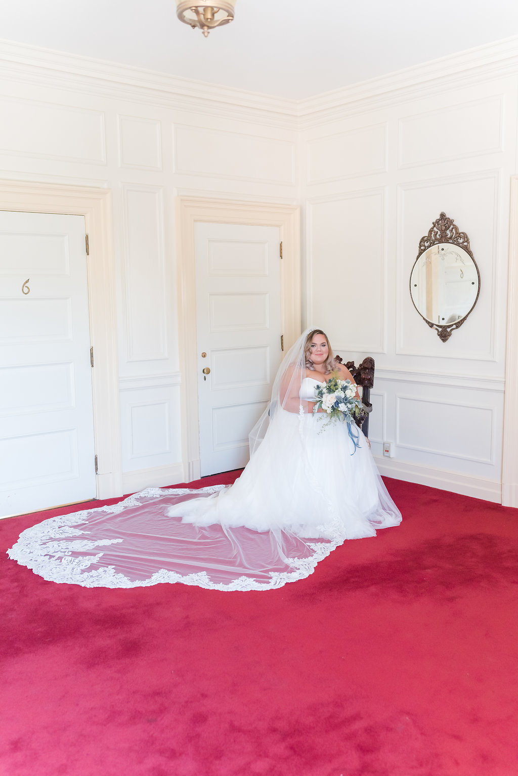 Tool Ball Gown with Cathedral Veil Chicago Wedding Rakoteet Photography