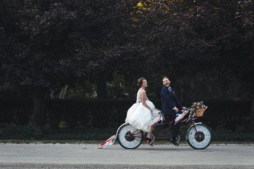 Sarah and Eric's Wild in Love Wedding