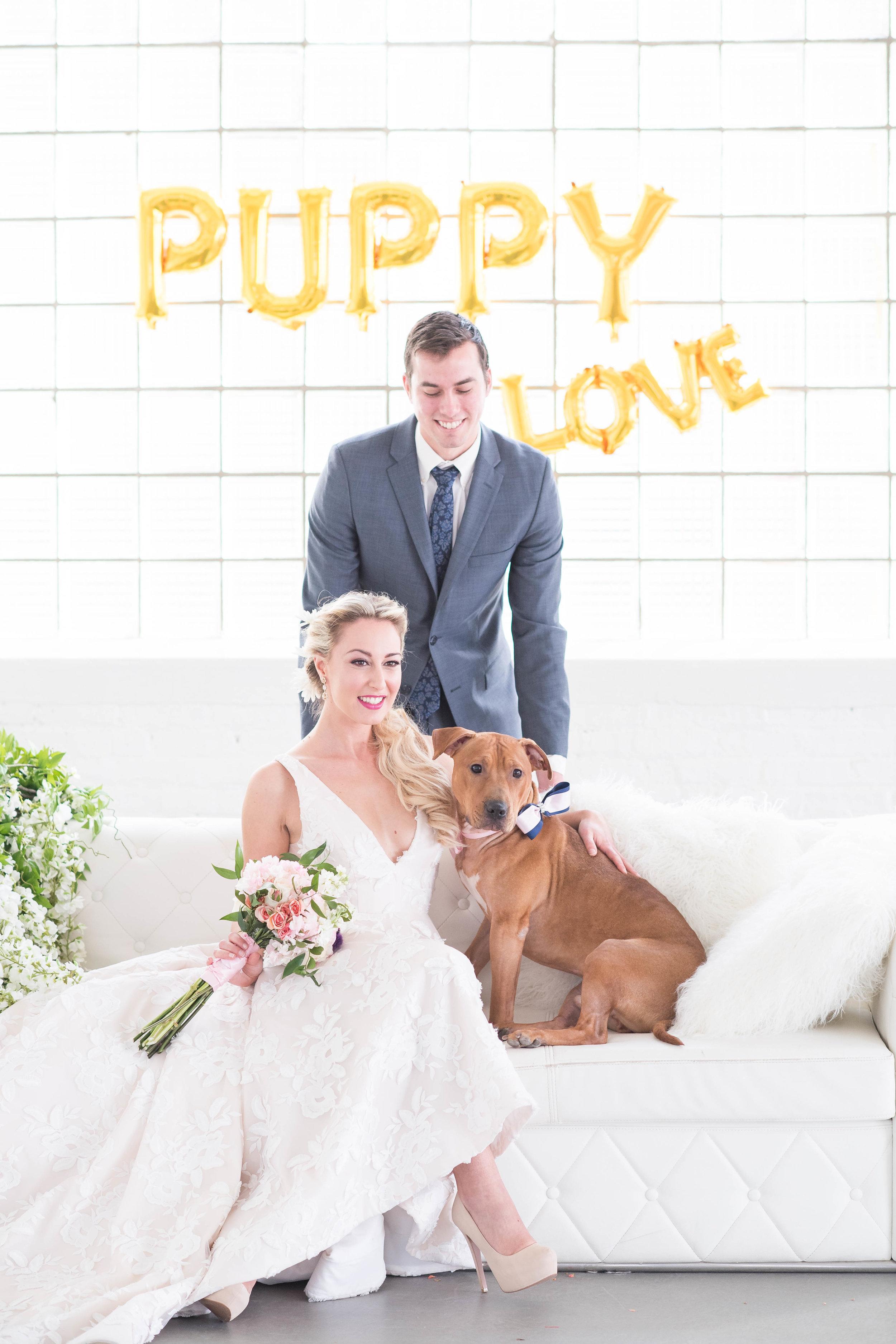 Puppy-Love-250.jpg
