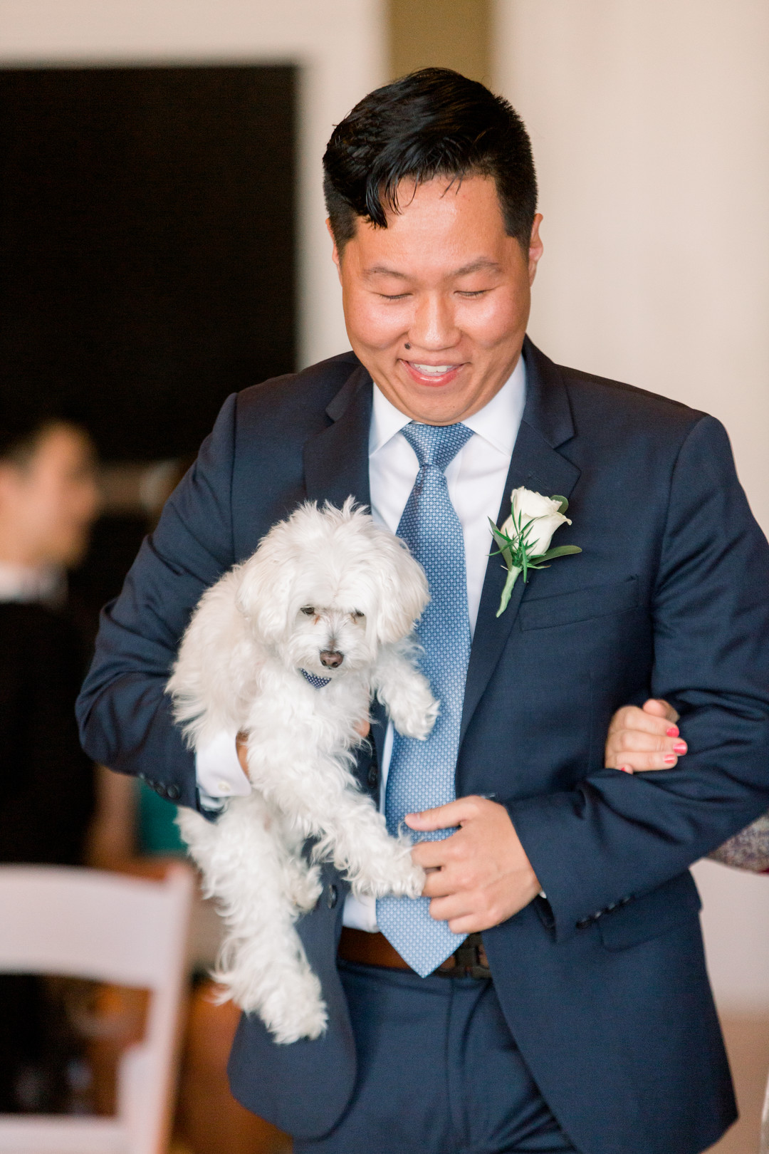 Dog as ring bearer: Spring wedding inspiration captured by Nicole Morisco Photography. Find more spring wedding ideas at CHItheeWED.com!