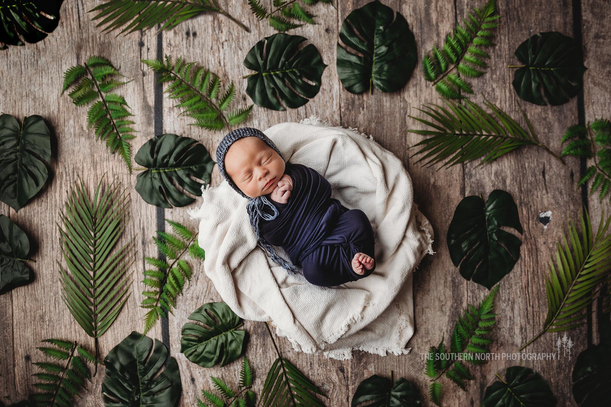 newborn-photography-austin-mn-minnesota-family-kids-photo-session-albert-lea-mn-rochester-mn-southern-minnesota-photographer-birth-photography-baby-fresh-48