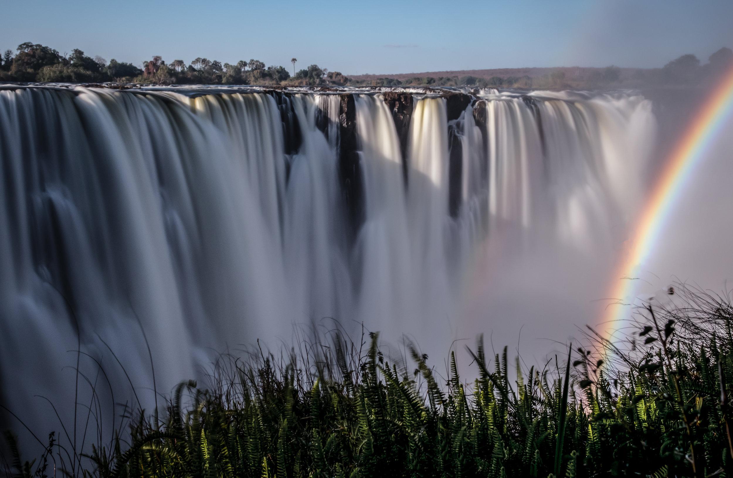 Botswana Safari Revisited cover image