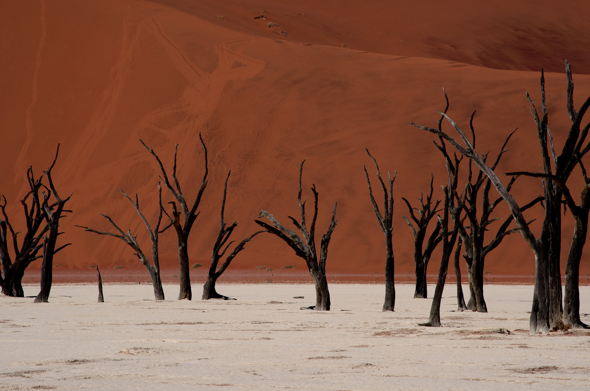 Namibia Revisited cover image