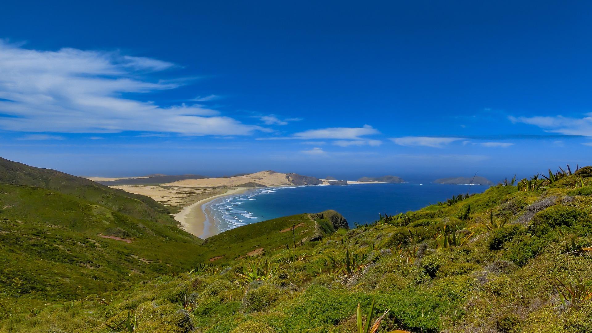NEW ZEALAND NORTH ISLAND PHOTO GALLERY — travelwildnow.com