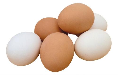 chicken_eggs.jpg