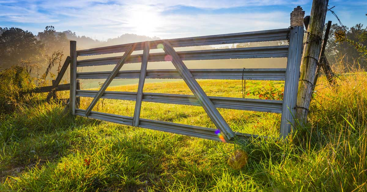 swingnin gate.jpg