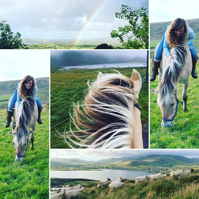 Happy Saint Patrick's Day everyone! 🍀❤️🍀 I would say I'm missing Ireland more than ever now but the truth is....I miss it the same every single day 😭❤️🍀💚#saintpatricksday#happysaintpatricksday#ireland#dingleireland#dingle#dinglehorseriding#loveandhorses#potofgoldattheendoftherainbow#missingireland🍀#stpaddysday#travelireland🍀#horsesofireland#horsesofinstagram#horsegirl#irishcountryside