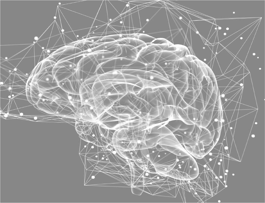 brain-img.jpg