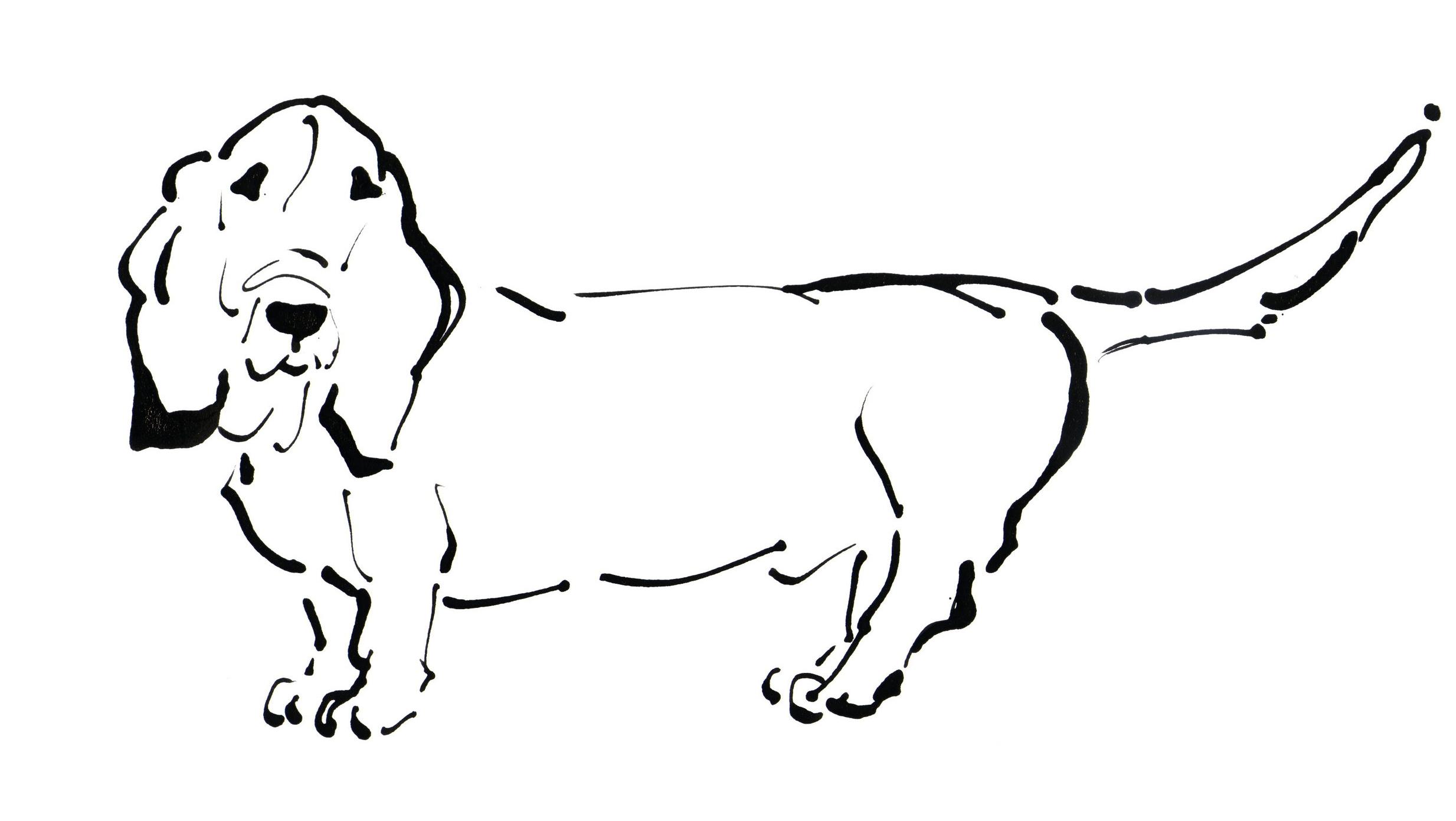 Duffy, the Basset Hound Side View 300 dpi.jpg