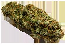 220px-Marijuana-Cannabis-Weed-Bud-Gram.jpg