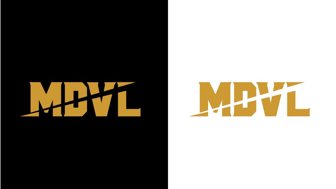 MDVL_Case Study_3.jpg