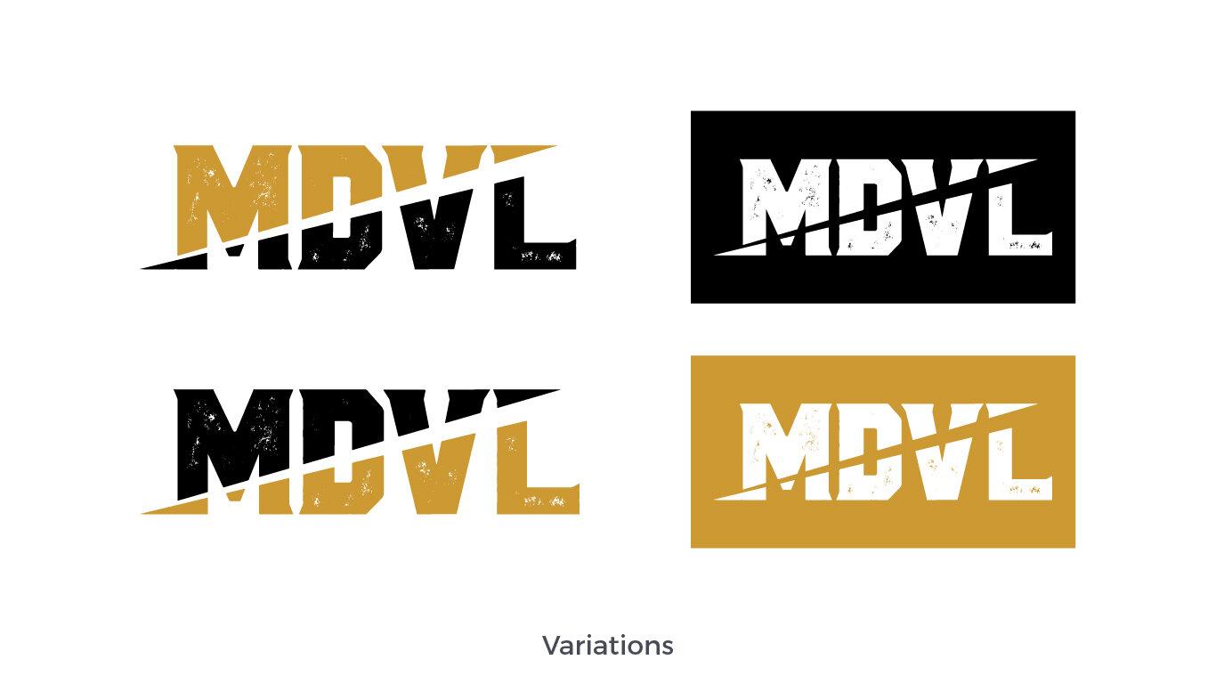 MDVL_Case Study_4.jpg