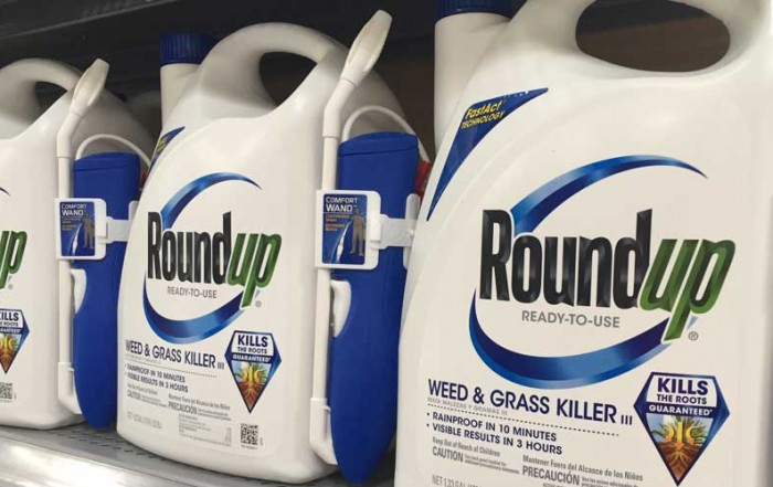 monsanto-ca-ruling-img-700x441.jpg