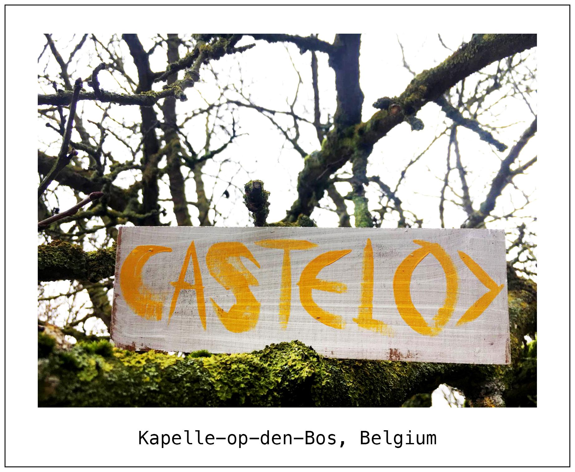 F Belgium.jpg