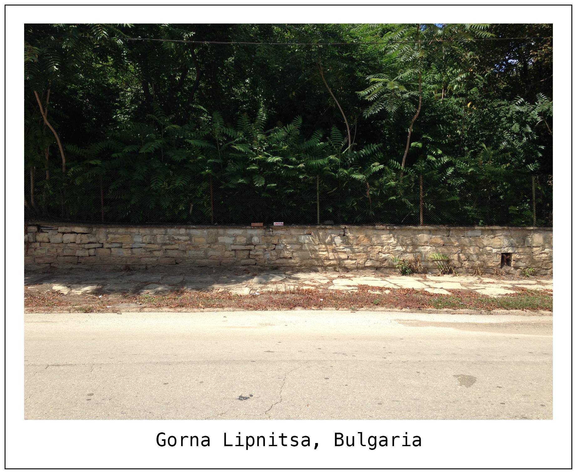 F Bulgaria 2.jpg