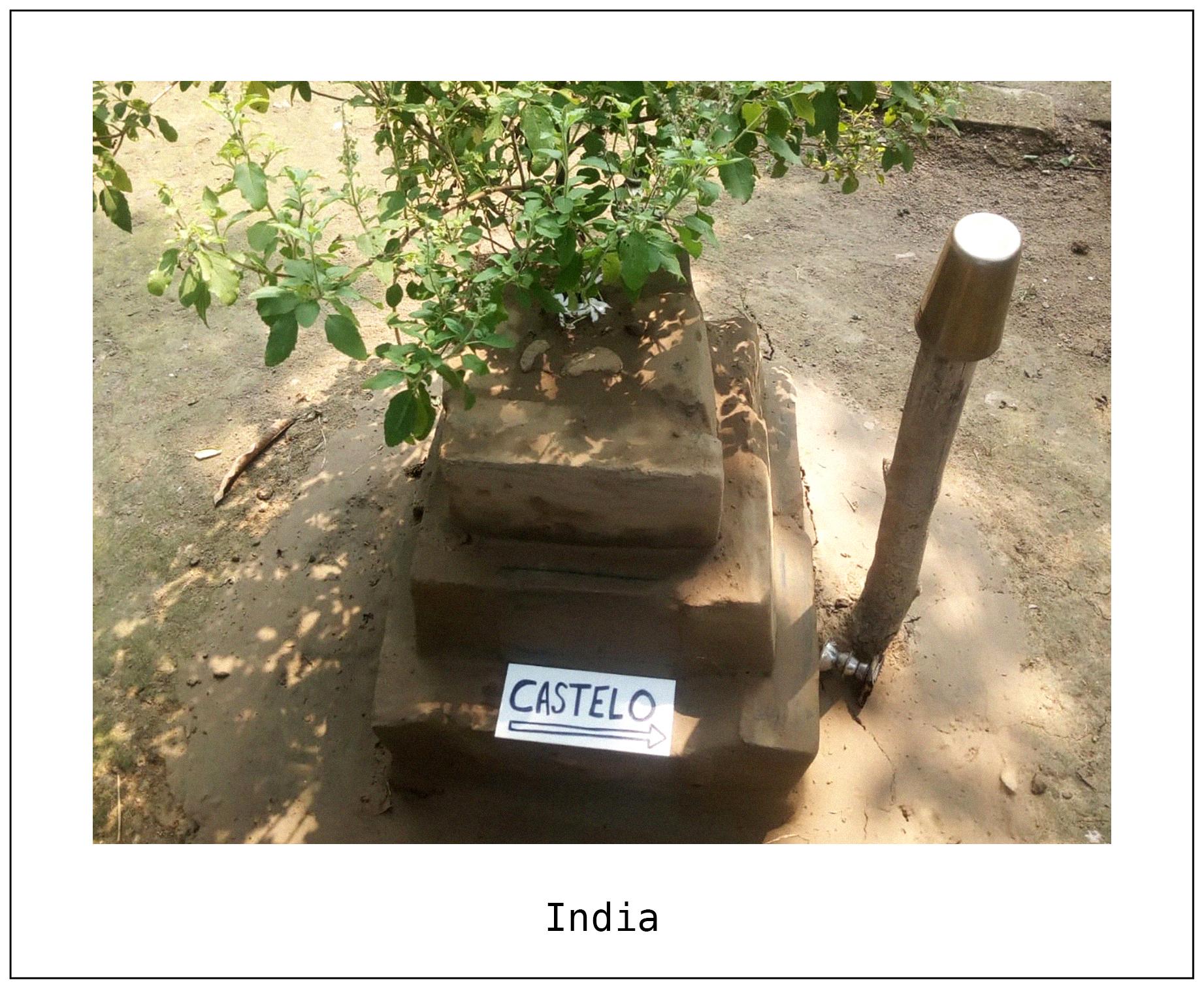 F India 2.jpg