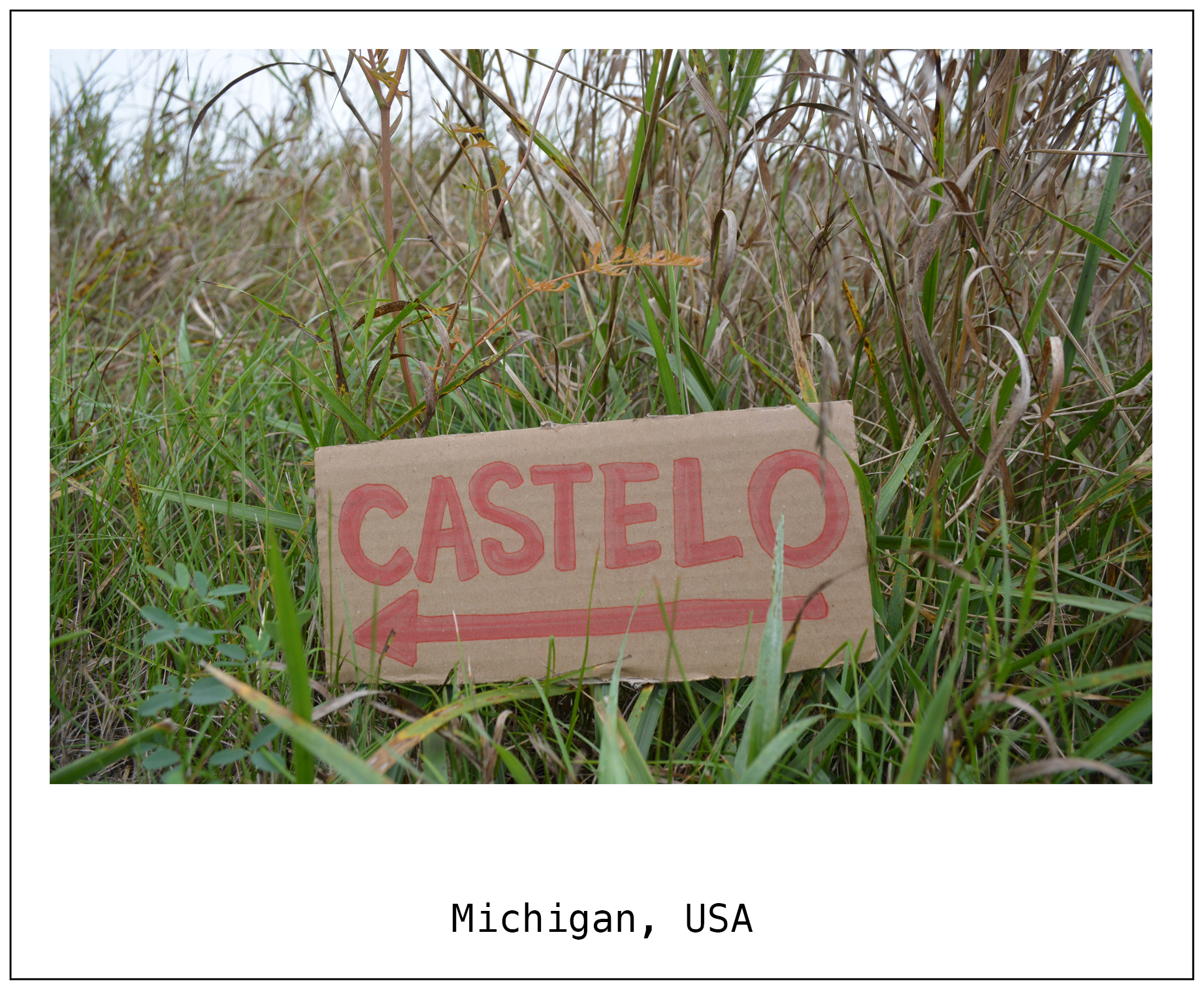 F Michigan USA 1.jpg