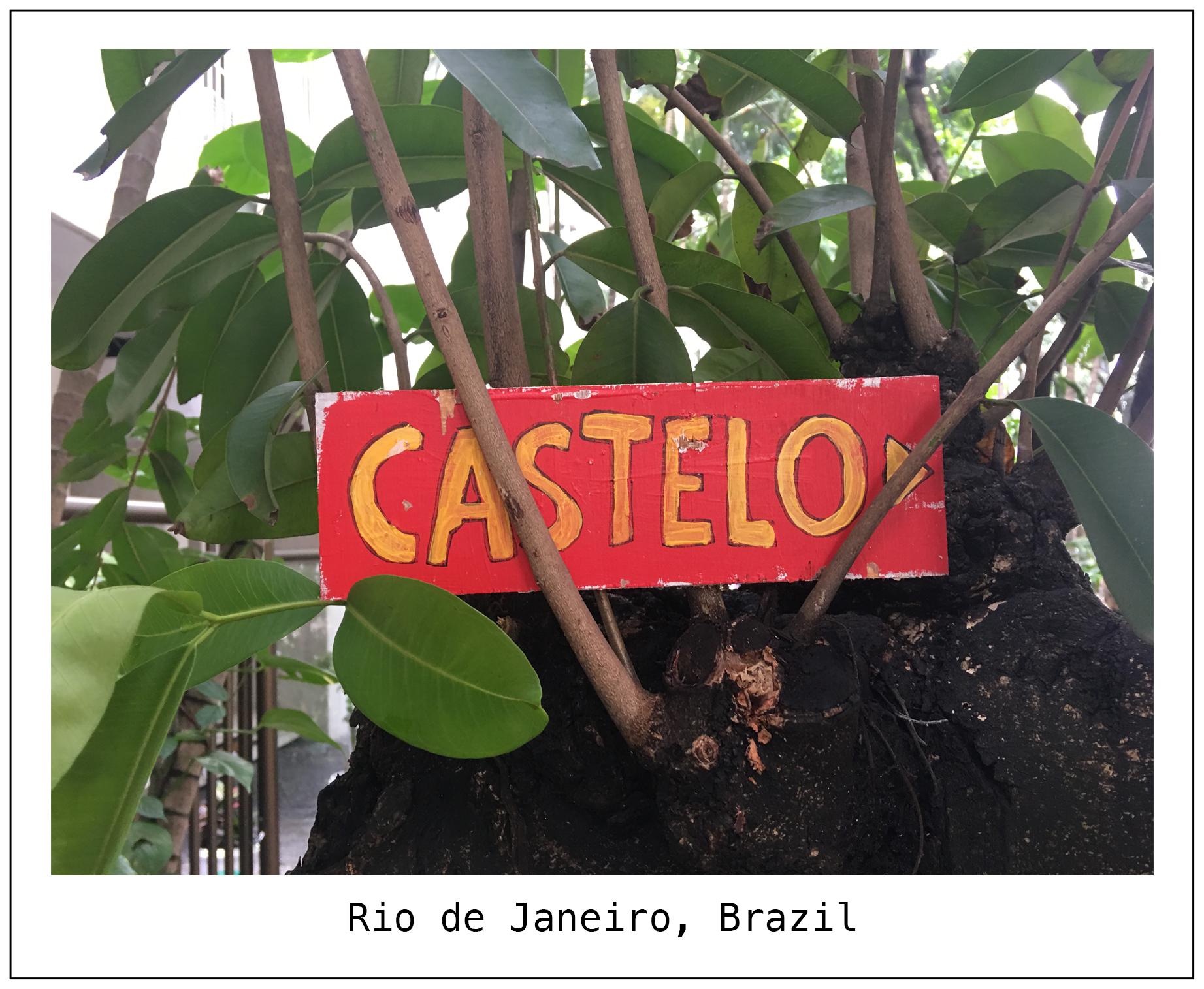F Rio 1.jpg