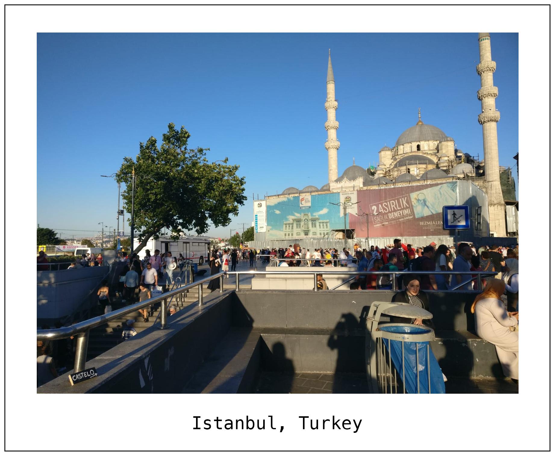 F Turkey 2.jpg