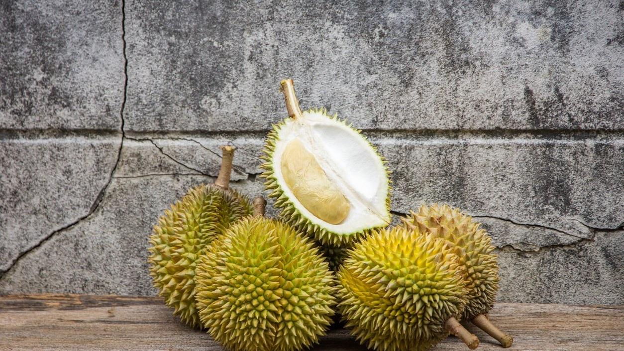 durian+%281%29.jpg