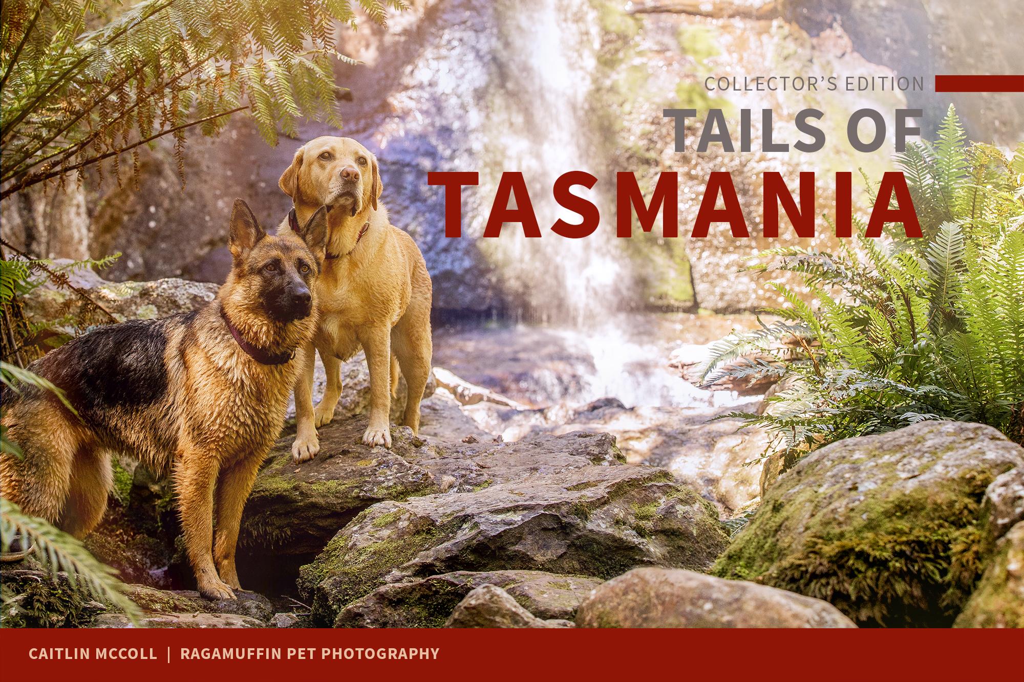 tails of tasmania