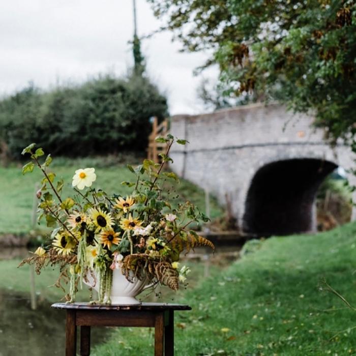 Wild-autumnal-flowers.jpg-nggid03780-ngg0dyn-0x600-00f0w010c010r110f110r010t010.jpg