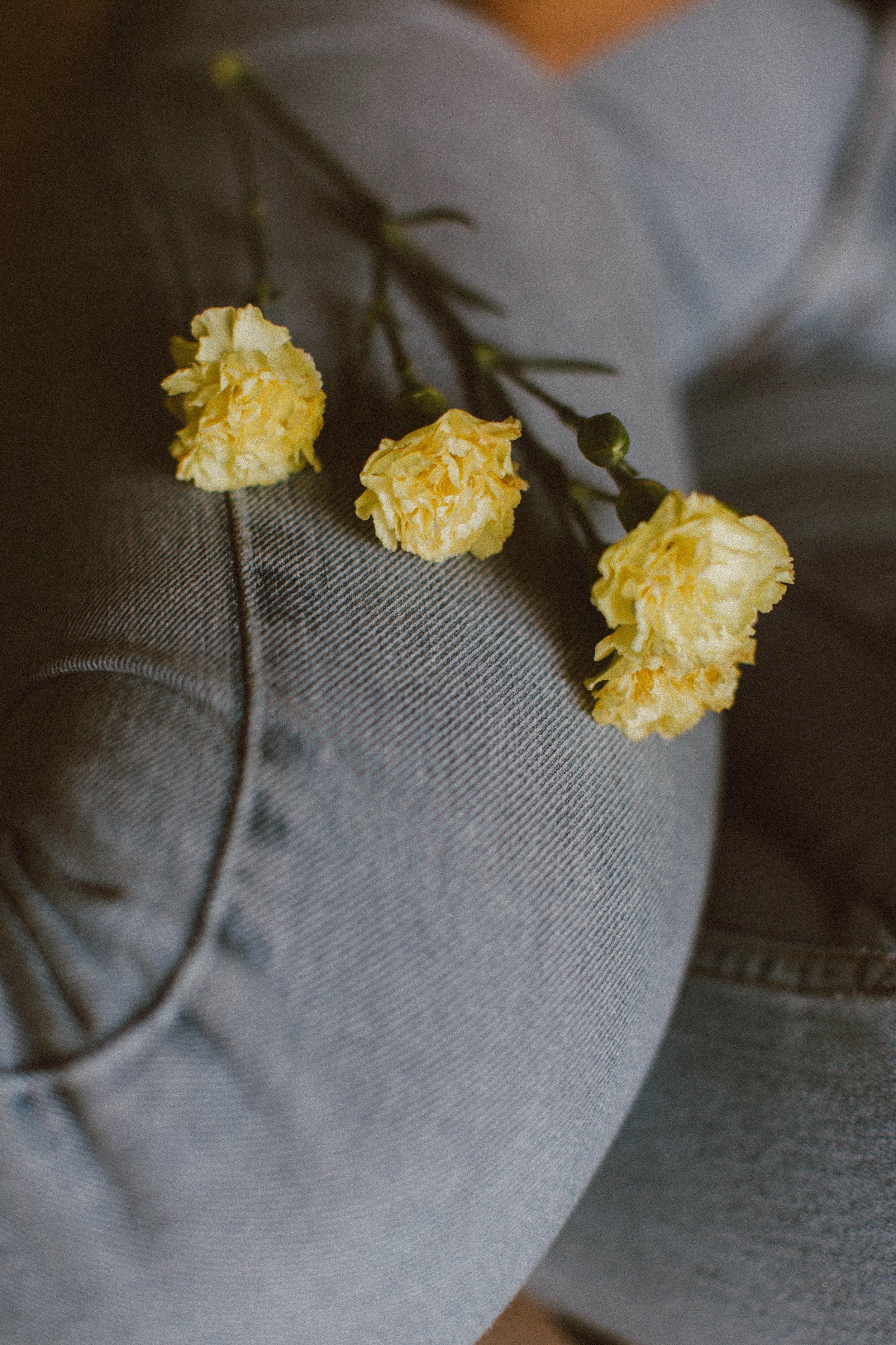 frank-flores-464933-unsplash.jpg