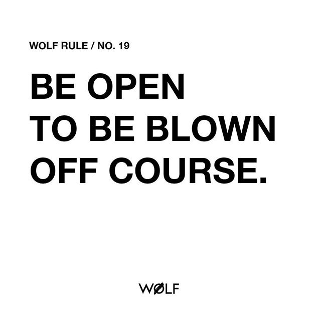 "#WØLFrules – ""I am a great friend of chaos. It's all we have. I mean, this whole concept of being able to manage life...life is risk, life is chance, life is being open to chance. The best things in my life, and probably in anybody's life, come out of being open to being blown off course."" Tilda Swinton // couldn't agree more! ____________________________________ #values #mindfulness #conquer #wolfit #doyourbest #adventures #wolfrulesforlife #selfcare #ig_quotes #spartanup #tildaswinton"