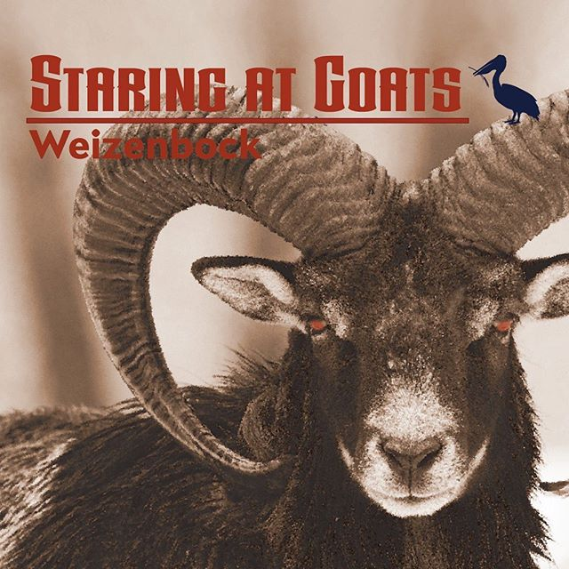 Want to know why Goats and Bock beers have always been associated? Ask the Bavarians. Want to try a wicked good Weizenbock? Come to Windermere Craft Beer Fest on October 12th.