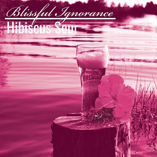 Blissful Ignorance will be available at Windermere Craft Beer Fest. This keg always kicks early so make sure you come by if you want a crisp and tart Berliner Weisse!