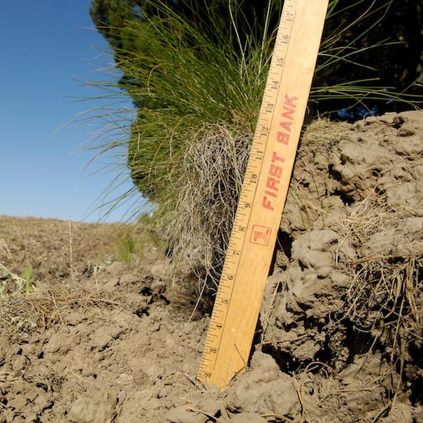 ErosionBlog.jpg