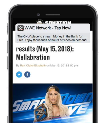 WWE Network Promotion
