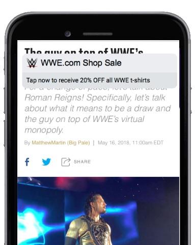 Flash Sale to WWE Shop