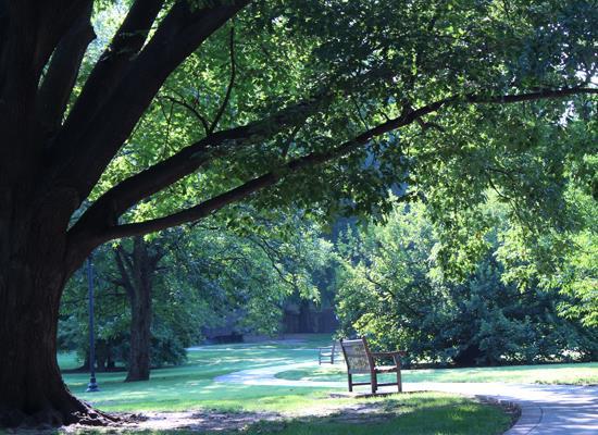 Arboretum at Woodward Park