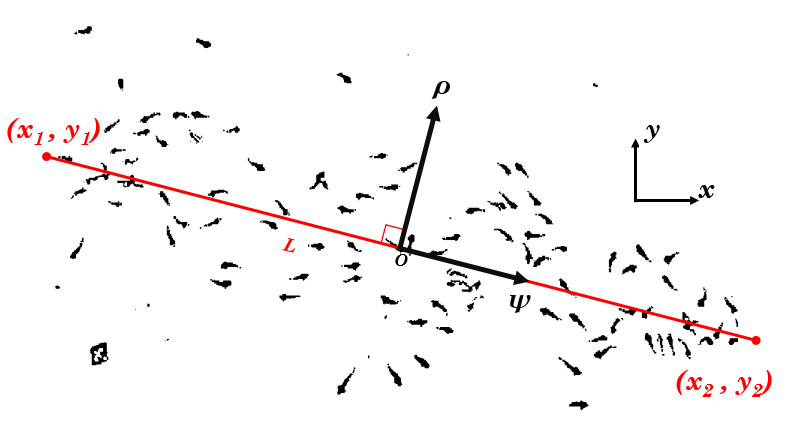 New coordinate axes ( ρ,ψ)  based on attraction line (colored in red)