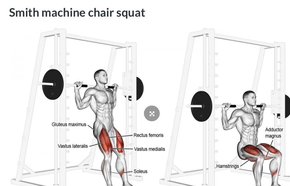 Smith Machine Chair Squat Tristar Athletes