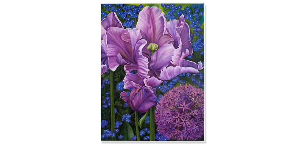 Purple Parrot Tulip