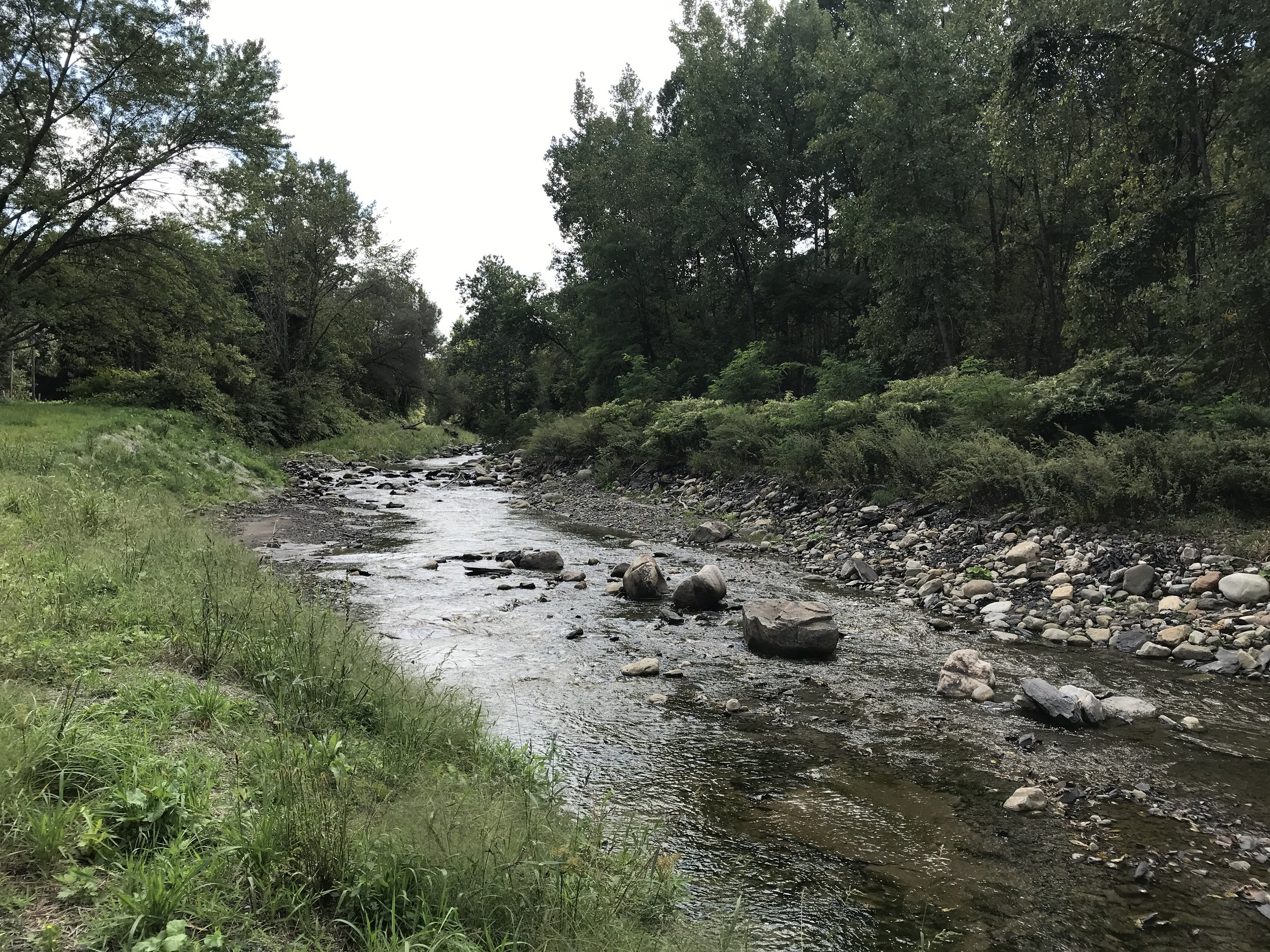 Fulmer Creek GreenPlain Floodplain Restoration funded by a grant through the EFC Green Innovation Grant Program, completed in 2018
