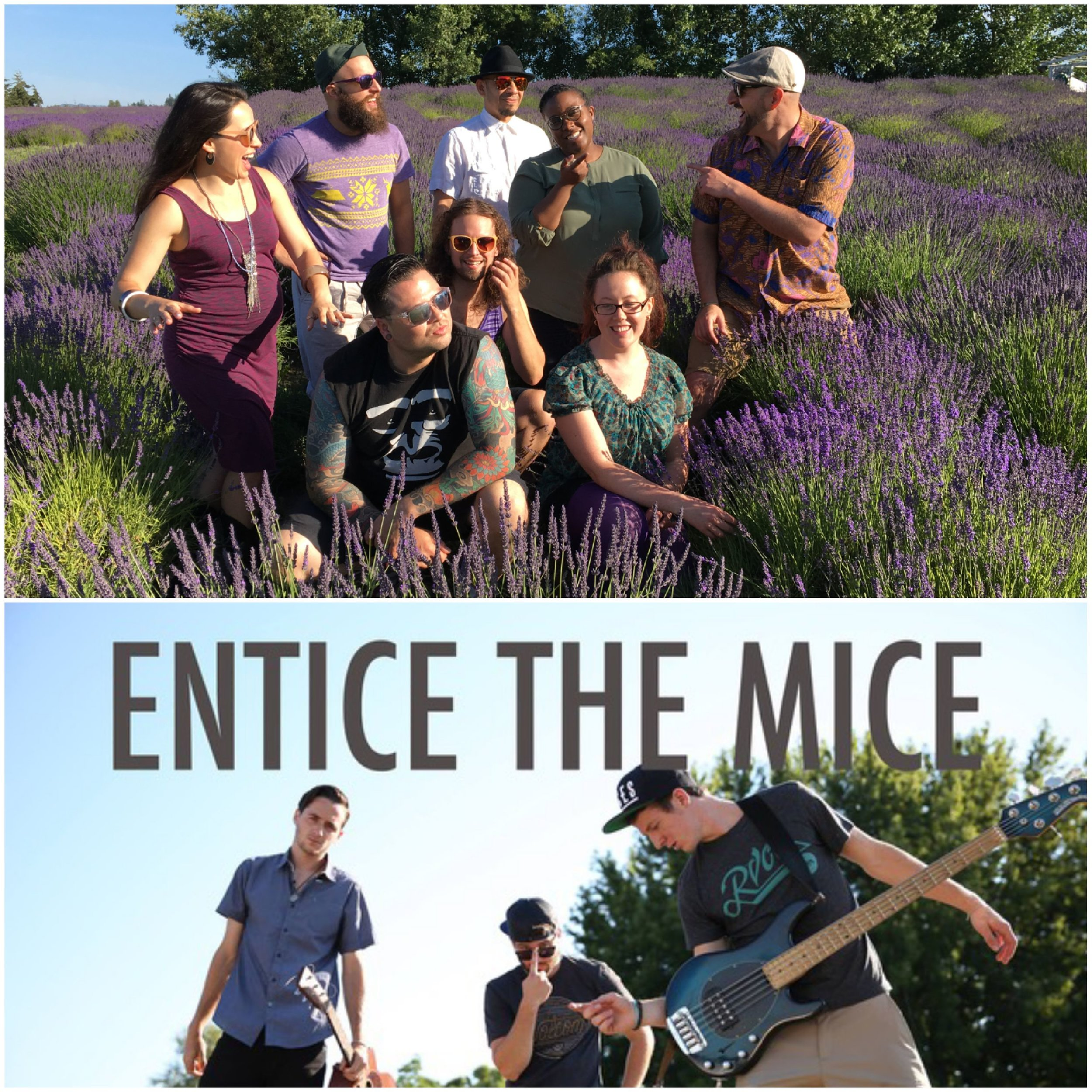 The Pazific -  August 1st  Entice the Mices