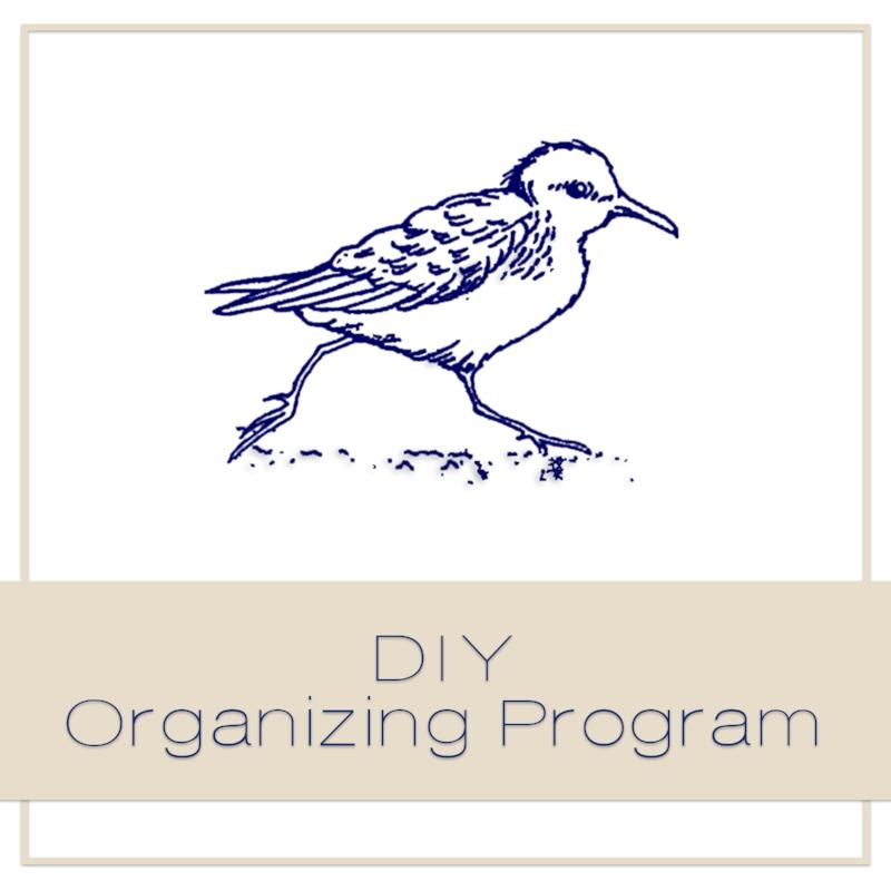 DIY Organizing Program