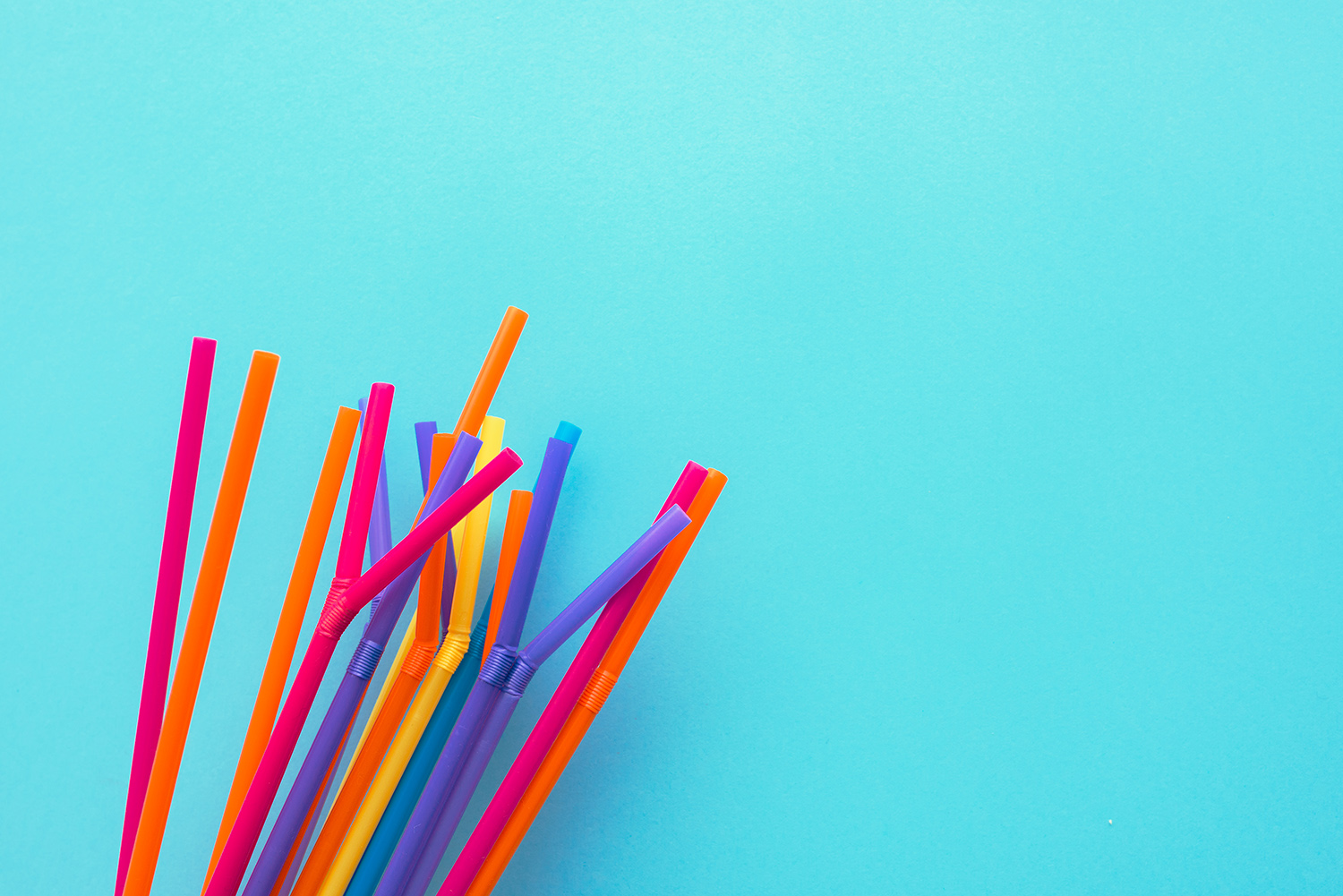The Last Straw - If you're based elsewhere in Australia, check out The Last Straw and get involved with their awesome program. Sign up as a straw-free venue and be part of a huge collective of businesses doing good for this blue planet of ours.