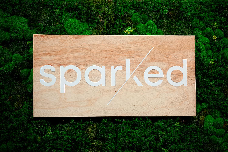 Sparked-DebraZeller-02.jpg