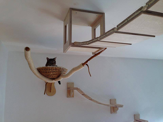 German-designed cat furniture  from  Goldtatze