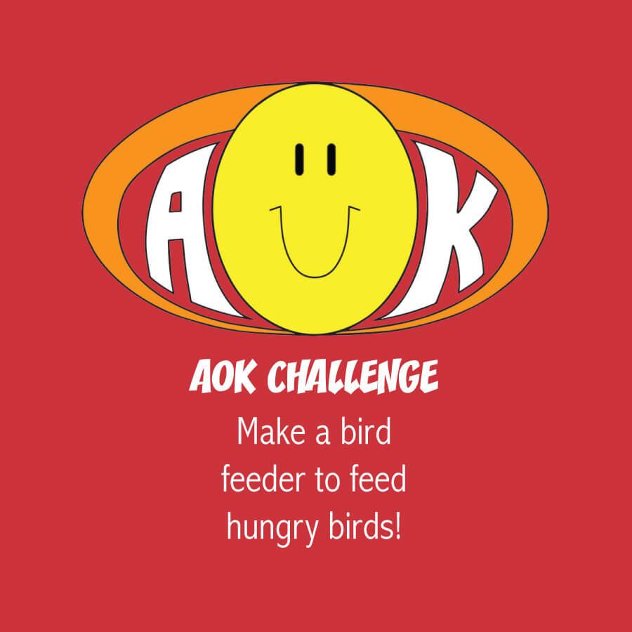 AOKChallenge_BirdFeeder.jpg